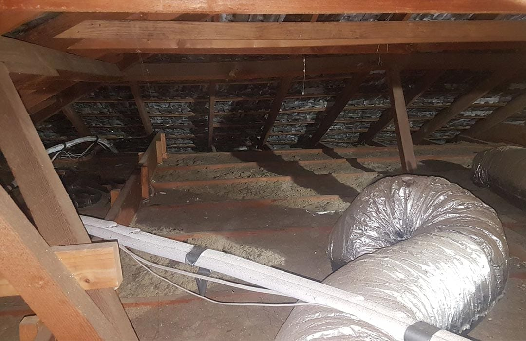 Insulation Removal Adelaide